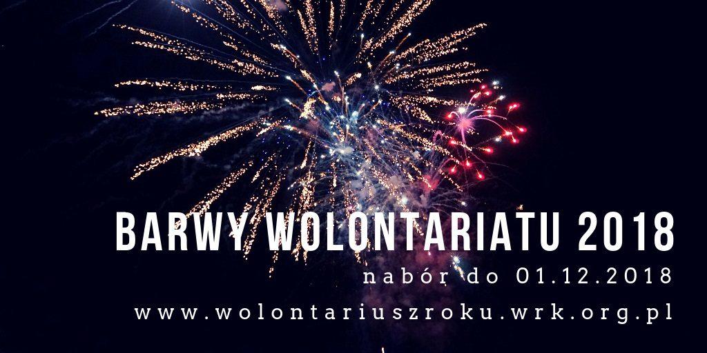 Barwy Wolontariatu 2018